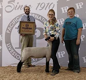 Johnston Club Lambs | Winners