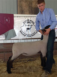 Johnston Club Lambs Winners